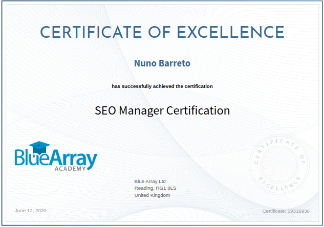 SEO Manager Certification - Blue Array Academy